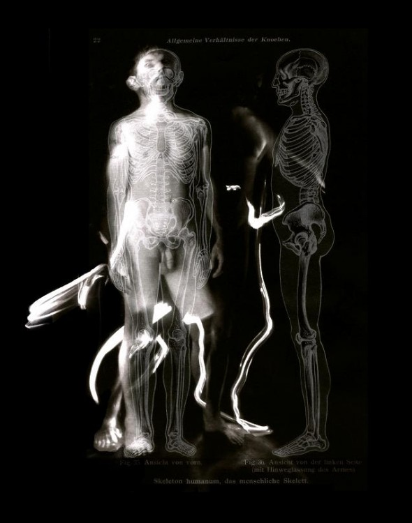 2 skeletons 