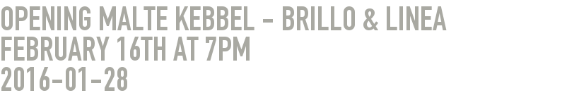 Opening Malte Kebbel - Brillo & Linea February 16th at 7pm